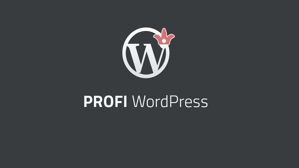 Profi: WordPress für Profis